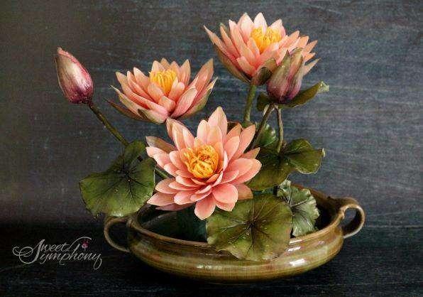 Arati-Mirji-Sugar-Flower-Water-lilies